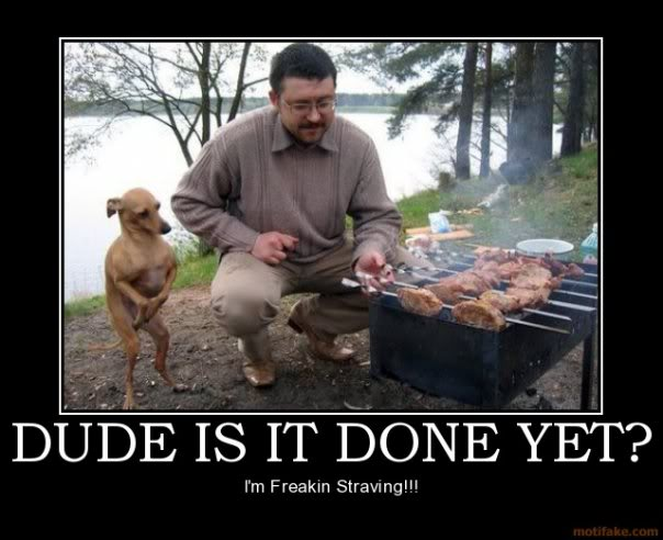 Starving Dog Demotivational Poster