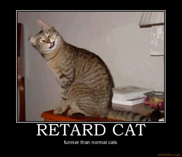 Retard Cat Demotivational Poster