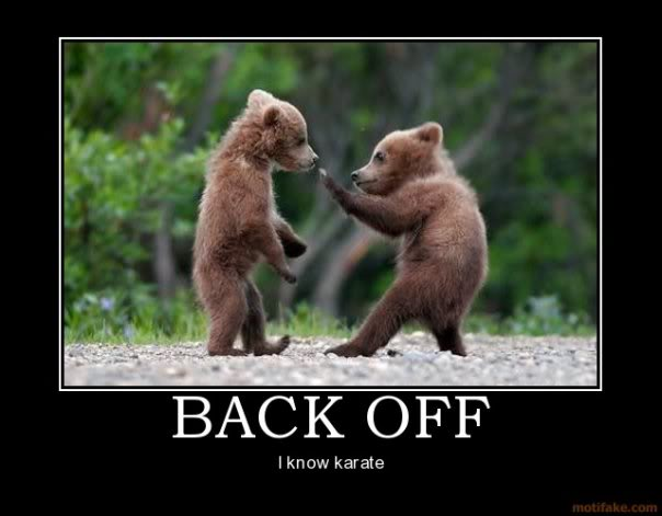 Karate Bear Demotivational Poster