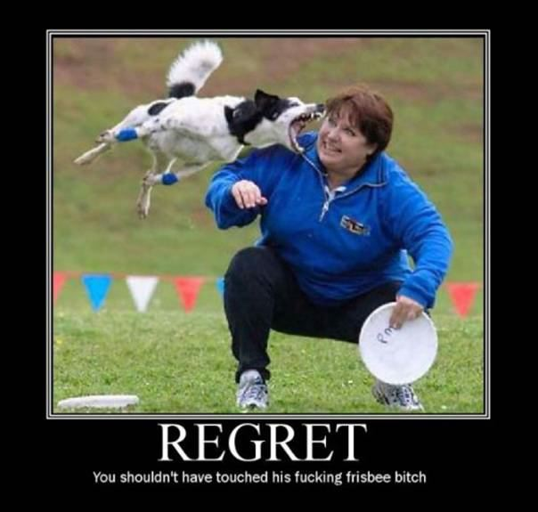 Regret DeMotivational Posters