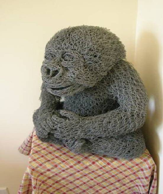 chicken wire monkey